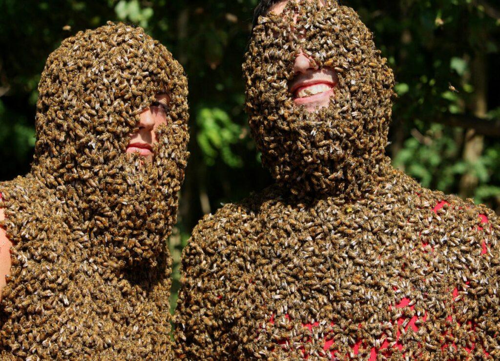одевание в пчел